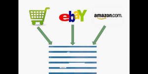 Customized ERP Solution for Ecommerce Traders listing on Ebay,…