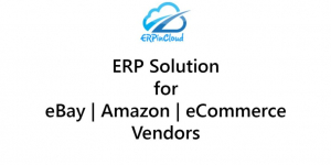 ERP Solution for eBay | Amazon | eCommerce Vendors