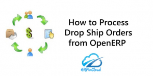How to Process Drop Ship Orders from OpenERP
