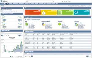 NetSuite wholesale distribution dashboard