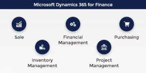 Microsoft Dynamics Finance