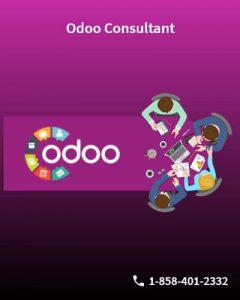 Odoo Consultants
